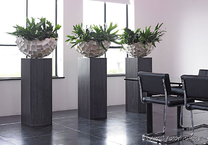 Decoratie kantoor maison design mikc